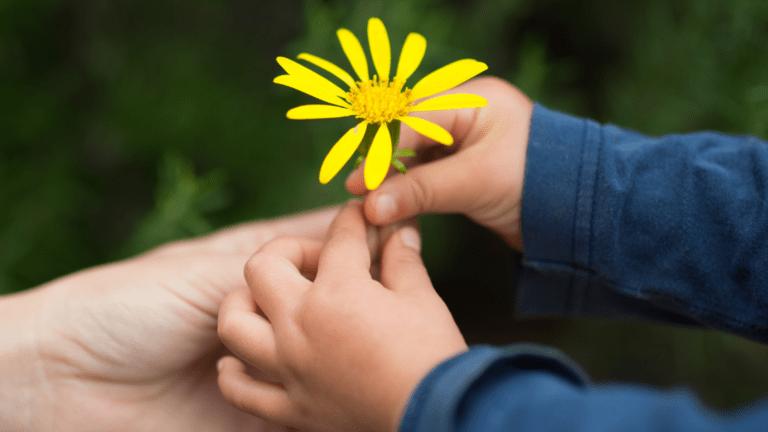Pieni lapsi antaa äidille kukan käteen.